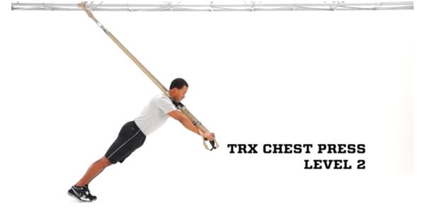 trx_chest