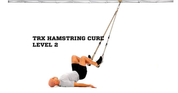 trx_hamstring1